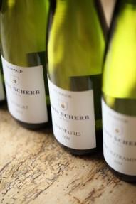 Vin blanc d'Alsace Louis Scherb