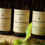 Grand Cru Goldert : terroirs with a spicy character